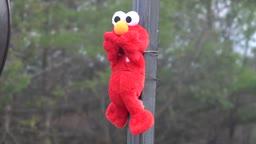 Powermodz Jet Engine Vs Tickle Me Elmo